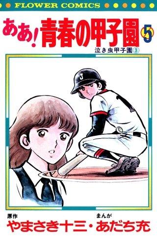 ああ!青春の甲子園(5)