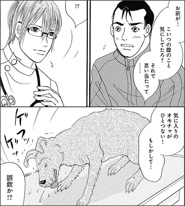 僕とシッポと神楽坂(かぐらざか)