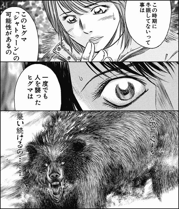 シャトゥーン~ヒグマの森~