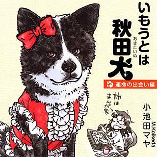 いもうとは秋田犬